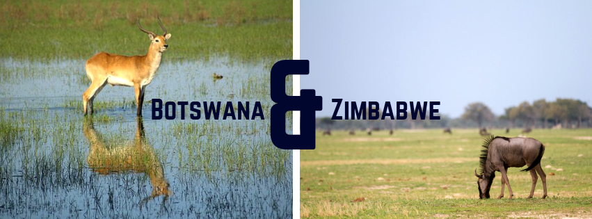 Custom holidays to Zimbabwe