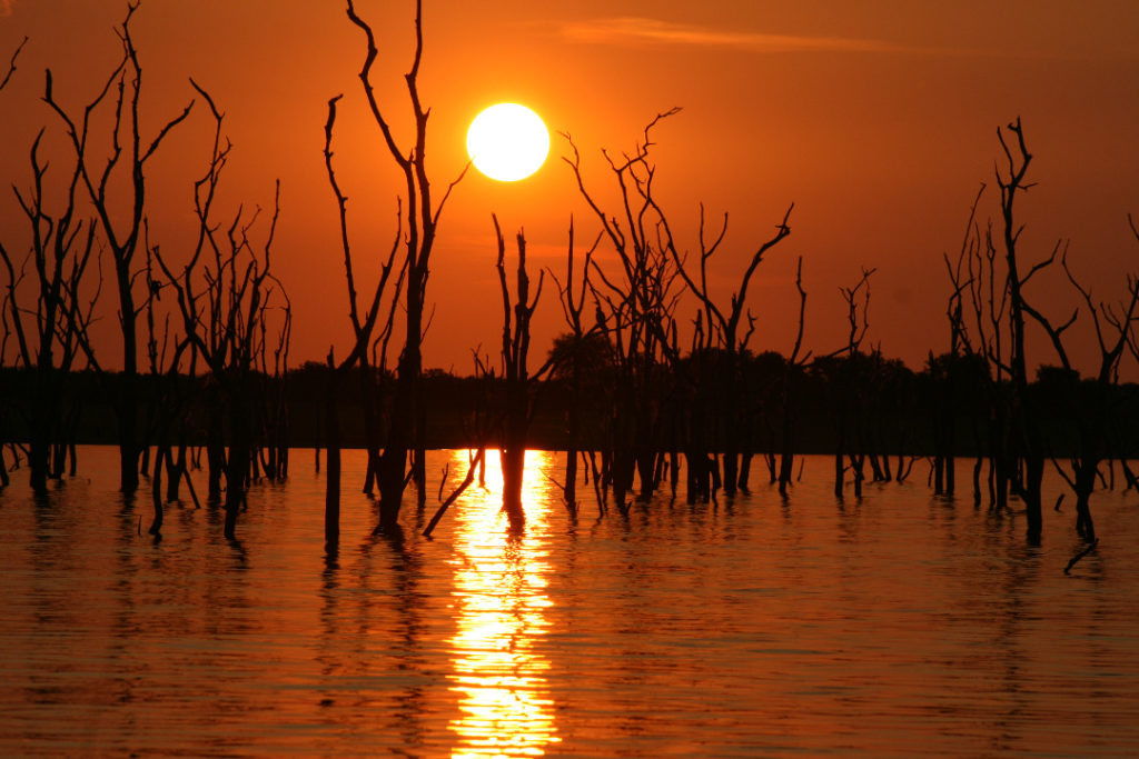Kariba Sunset and trees