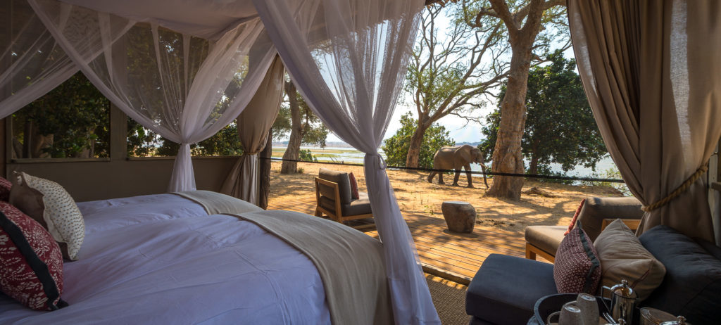 View from double bed of elephant at Ruckomechi Camp.