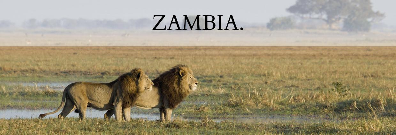 Destination Zambia
