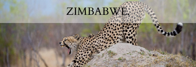Destination Zimbabwe