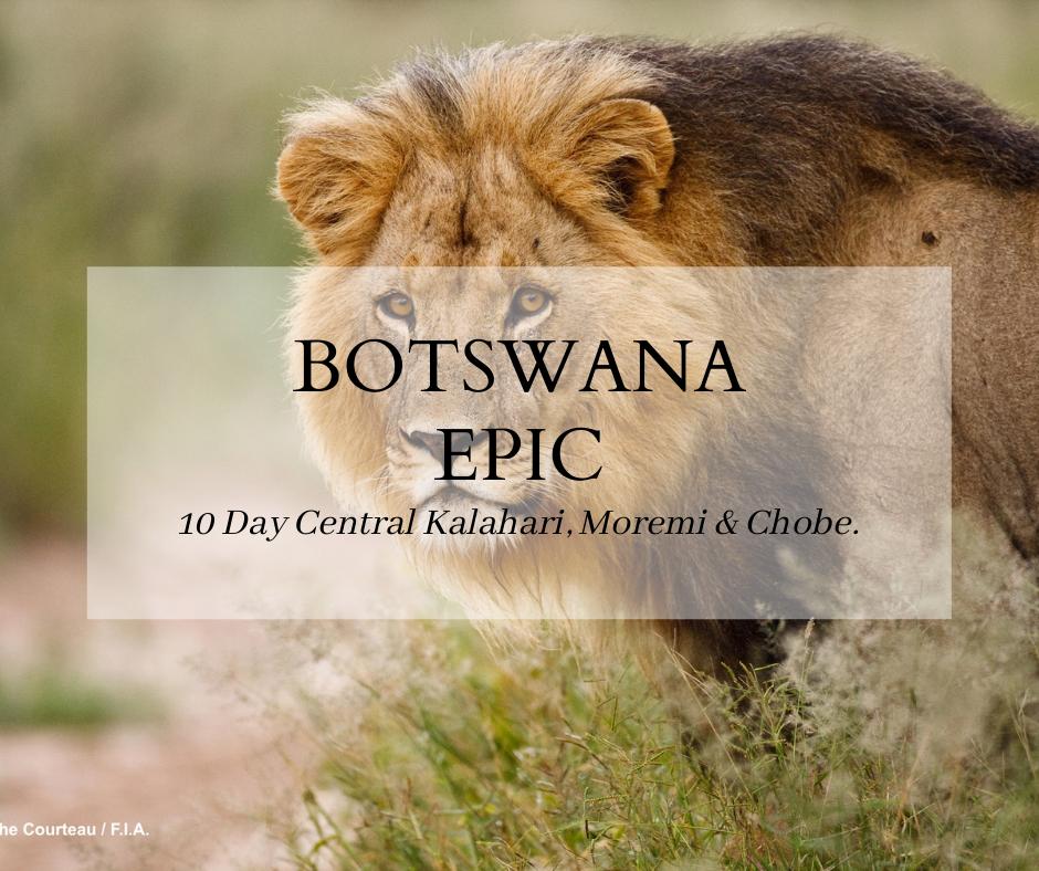 Botswana Epic Safari